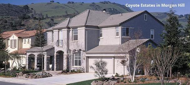 Coyote Estates