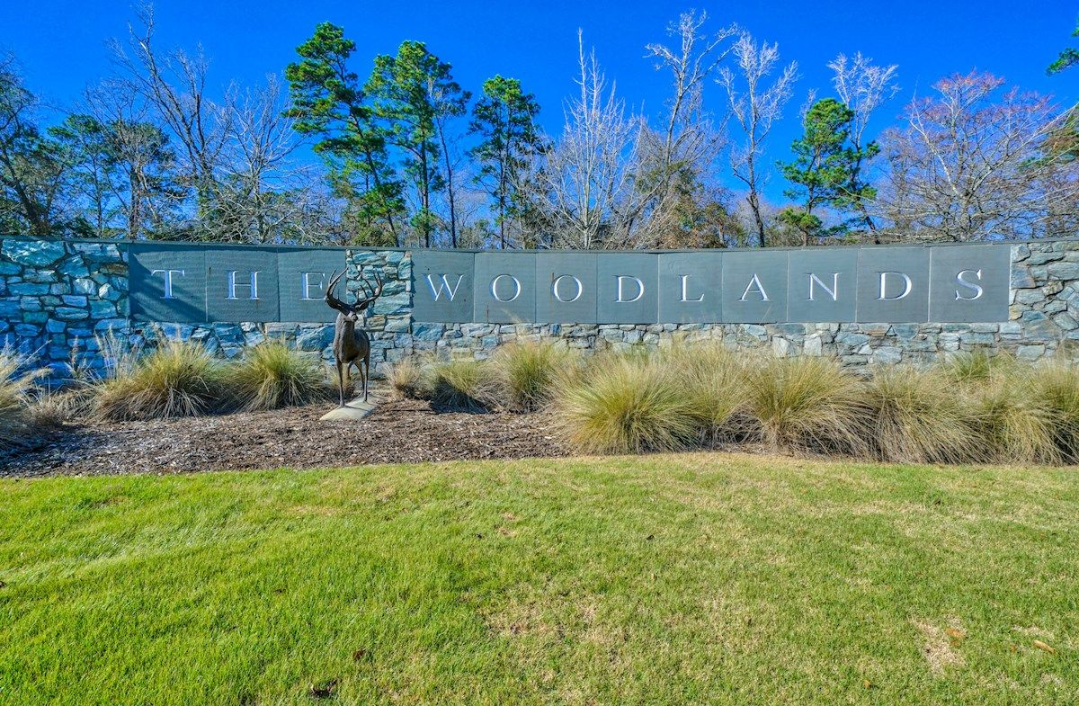 The Woodlands: May Valley in The Woodlands, TX, New Homes & Floor ...