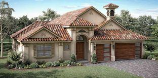 Courtyard IV - Hampton Landing at Providence: Davenport, Florida - ABD Development