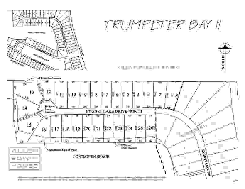 Trumpeter Bay 2