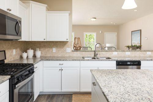 Kitchen-in-Elements 2100-at-Longmeadow-in-Niles