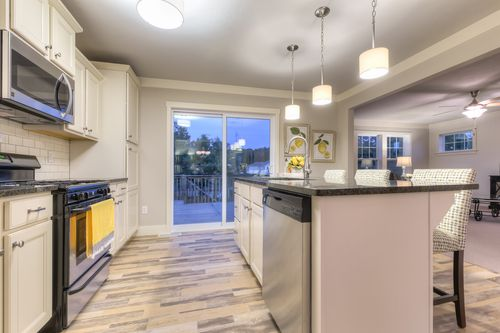 Kitchen-in-Elements 2200-at-Trumpeter Bay-in-Benton Harbor