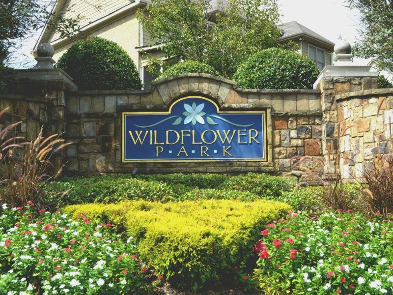 'Wildflower Park' by Almont Homes in Atlanta