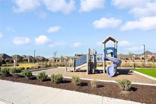 Muirfield - University Place: Dallas, Texas - Ashton Woods