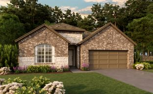 Avery - The Meadows at Imperial Oaks 50ft: Conroe, Texas - Ashton Woods
