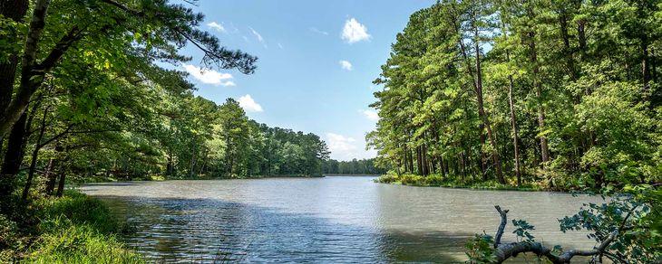 Lake Castleberry,27523