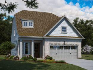 Carrington - Savaan: Cary, North Carolina - Ashton Woods