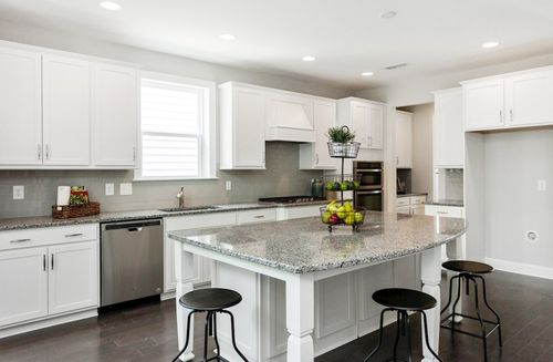 Kitchen-in-Dogwood-at-Peak 502-in-Apex
