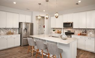 Hampton Place by Beazer Homes in Raleigh-Durham-Chapel Hill North Carolina