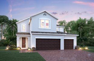 Hampton - Park View at the Hills - Grove Series: Minneola, Florida - Beazer Homes