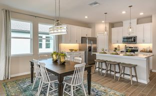 The Reserve at Pradera - Estancia by Beazer Homes in Tampa-St. Petersburg Florida