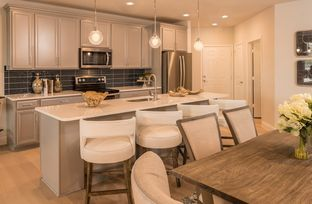 Sherwood - Gatherings® at Twin Creeks: Allen, Texas - Beazer Homes