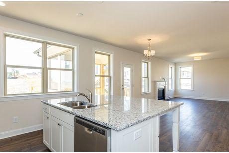 Kitchen-in-Hamilton-at-Peak 502-in-Apex