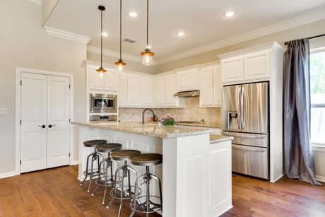 Kitchen-in-Palm-at-Retama Village at Bentsen Palm-in-Mission