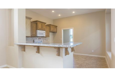 Kitchen-in-Palmetto-at-Retama Village at Bentsen Palm-in-Mission