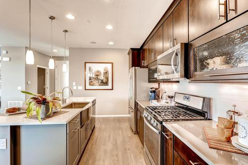 Kitchen-in-The Faversham-at-Connections-in-Westminster