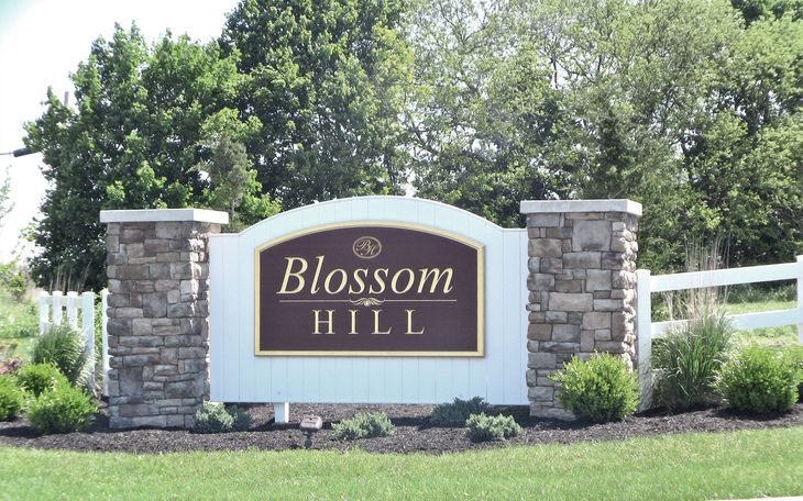Welcome to Blossom Hill!