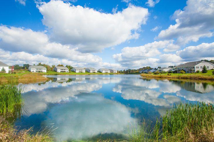 Bay Pointe Pond