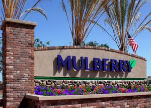 homes in Mulberry by Blandford Homes