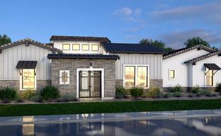 Estates at Mandarin Grove by Blandford Homes in Phoenix-Mesa Arizona