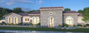 Residence 8 - Estates at Mandarin Grove: Mesa, Arizona - Blandford Homes