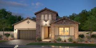 Residence Six - Palma Brisa: Phoenix, Arizona - Blandford Homes