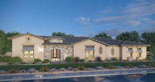 Residence 9 - Estates at Hermosa: Mesa, Arizona - Blandford Homes