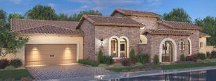 Residence 17 - Estates at Hermosa: Mesa, Arizona - Blandford Homes