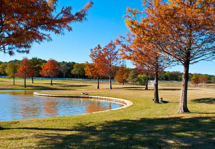 Country Lakes Water Feature:Fall Colors at Country Lakes