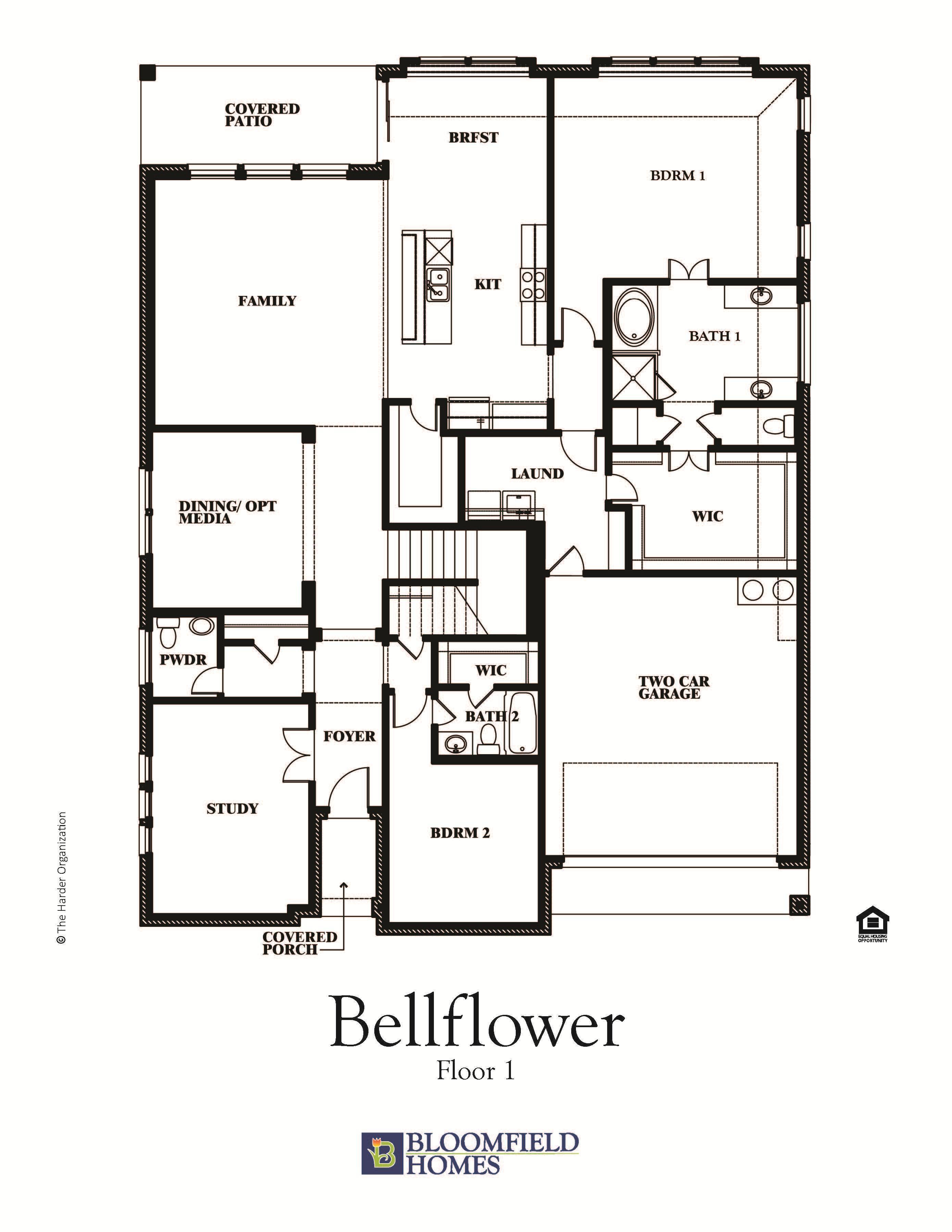 Bellflower 1