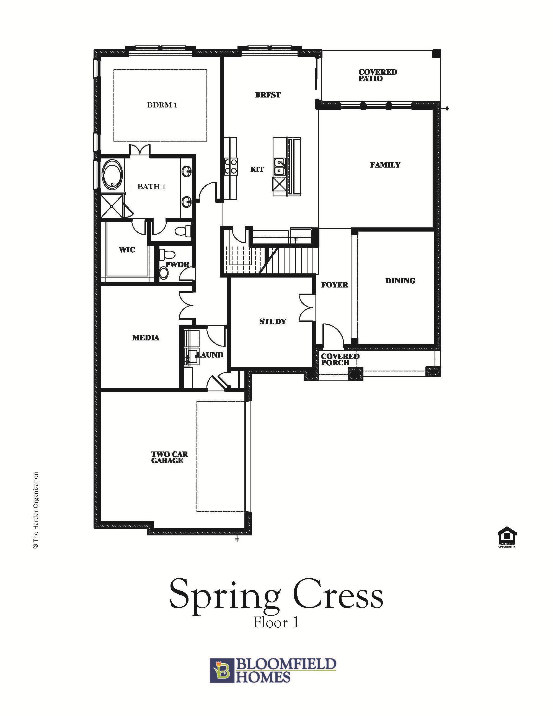 Spring Cress 1