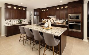 Residence 5 - Southport Neighborhood at Delaney Park: Oakley, California - Brookfield Residential