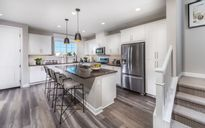 Citrus at Canvas Park Collection at New Haven by Brookfield Residential in Riverside-San Bernardino California