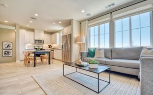 Residence 1 - Citrus at Canvas Park Collection at New Haven: Ontario, California - Brookfield Residential