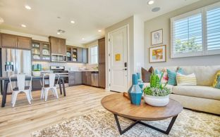 Residence 2 - Citrus at Canvas Park Collection at New Haven: Ontario, California - Brookfield Residential