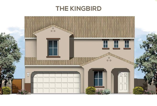 The Kingbird