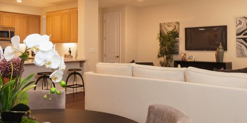 Greatroom-and-Dining-in-Plan 7-at-Vineyard Village-in-Buellton