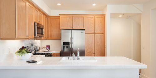 Kitchen-in-Plan 1-at-Vineyard Village-in-Buellton