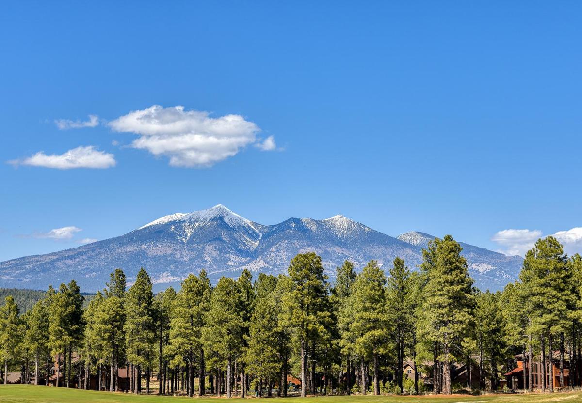 Woody Mountain Estates