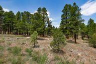 Juniper Point by Capstone Homes in Flagstaff Arizona