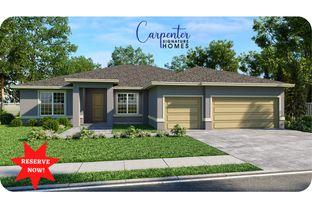 Boca Grande - Carpenter Homes Signature Series: Tampa, Florida - Carpenter Homes