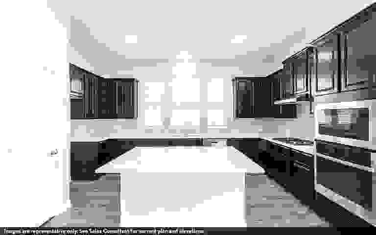 44149936-200602.jpg
