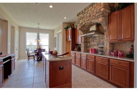 Kitchen-in-Cappiello-Mercury Luxury Home-at-The Homestead-in-Sunnyvale