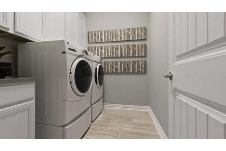 Laundry-in-Artesia-Gold-at-Woodshore-in-Clute