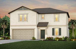 Wakefield - Brookside: Ruskin, Florida - Centex Homes