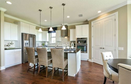 Kitchen-in-Dockside-at-Whaley's Creek-in-Saint Cloud