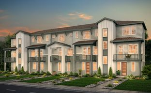 Pearson Grove Townhomes by Century Communities in Denver Colorado