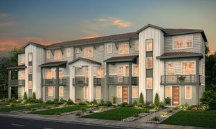 Residence 24250 - Pearson Grove Townhomes: Lakewood, Colorado - Century Communities