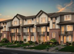 Residence 20330 - Pearson Grove Townhomes: Lakewood, Colorado - Century Communities