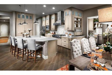 Kitchen-in-Residence 7945-at-Marvella-in-Centennial
